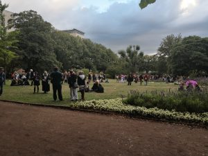Schlosspark / Freigelände